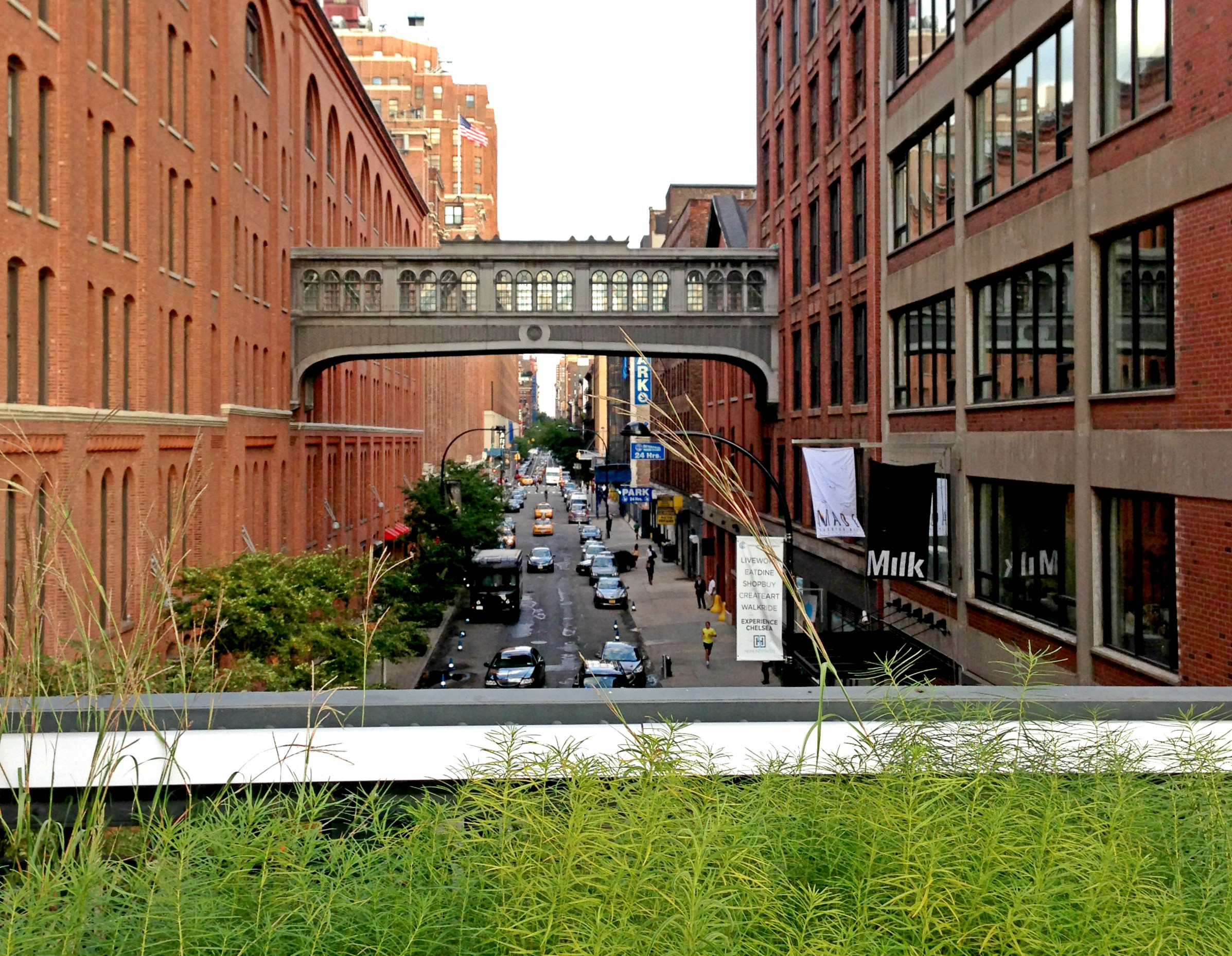 New York Bilder High Line park NYC Beitrag